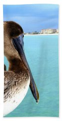 This Is My Town - Pelican At Clearwater Beach Florida  Hand Towel