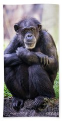 Thoughtful Chimpanzee  Bath Towel by Stephanie Hayes