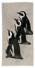 Three African Penguins Bath Towel