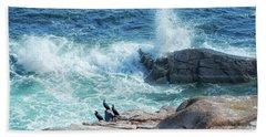 Three Cormorants At Monument Cove, Acadia National Park Hand Towel