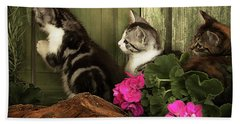 Three Cute Kittens Waiting At The Door Bath Towel