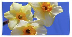 Bath Towel featuring the photograph Three Daffodils by Judy Vincent