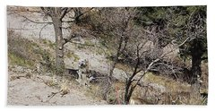 Dry Mountain Slope With Three Deer Bath Towel