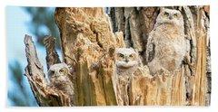 Three Great Horned Owl Babies Hand Towel