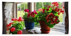 Three Pots Of Geraniums On Windowsill Hand Towel