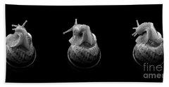 Three Snails Bath Towel