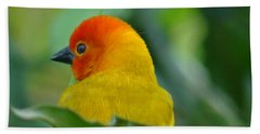 Through A Child's Eyes - Close Up Yellow And Orange Bird 2 Bath Towel