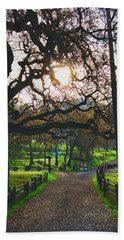 Through The Oaks Hand Towel
