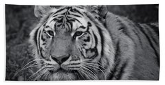 Tiger In The Grass Hand Towel by Darcy Michaelchuk