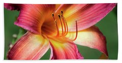 Tiger Lily Close Up Hand Towel