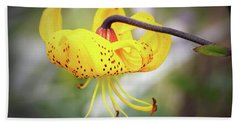 Tiger Lily. Hand Towel