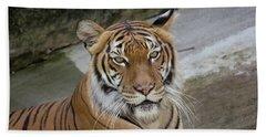 Tiger Tiger Hand Towel by John Black