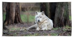 Bath Towel featuring the photograph Timber Wolf by Andrea Silies