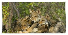Timber Wolf Trio In Denali Hand Towel