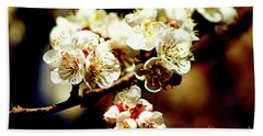 Timid Love Apricot Blossoms II Bath Towel