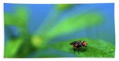 Tiny Fly On Leaf Hand Towel