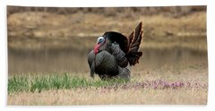Tom Turkey At Pond Hand Towel by Sheila Brown