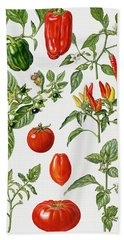 Tomatoes And Related Vegetables Hand Towel by Elizabeth Rice
