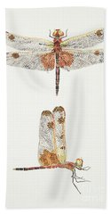 Top And Side Views Of A Male Calico Pennant Dragonfly Hand Towel