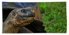 Tortoise Hand Towel