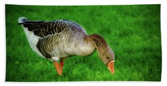 Toulouse Goose  Hand Towel