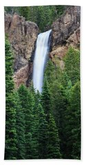 Bath Towel featuring the photograph Treasure Falls by David Chandler