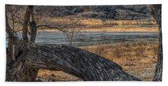 Tree At Elizabeth Lake Hand Towel