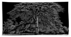 Tree In England Bath Towel