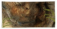 Hand Towel featuring the photograph Tree Memories # 22 by Ed Hall