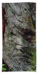Hand Towel featuring the photograph Tree Memories # 38 by Ed Hall