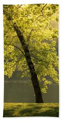 Hand Towel featuring the photograph Tree Of Light by Shane Holsclaw