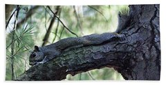 Bath Towel featuring the photograph  Tree Squirrel by B Wayne Mullins