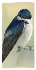 Hand Towel featuring the photograph Tree Swallow by Jennie Marie Schell