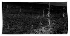 Trees On The Lava Field Hand Towel