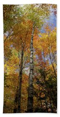 Trees On The Lincoln Woods Trail Bath Towel by Nancy De Flon