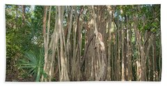 Trees With Aerial Roots At The Coba Ruins  Hand Towel