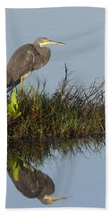 Tri-colored Heron And Reflection Bath Towel