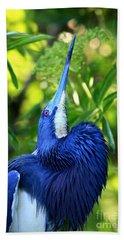 Tri-colored Heron Head Throw Hand Towel
