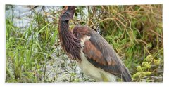 Tri-colored Heron Bath Towel