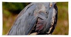 Tricolor Heron Hand Towel