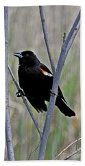 Tricolored Blackbird Bath Towel