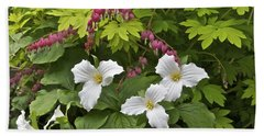 Trillium And Bleeding Hearts1079 Hand Towel