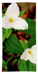 Trilliums Bath Towel