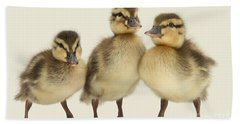 Triple Ducklings Bath Towel