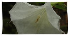 Trumpet In The Rain Hand Towel