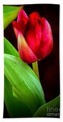 Tulip Caught In The Light Hand Towel