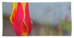 Tulip Fire Hand Towel