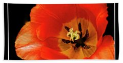 Tulip Macro Hand Towel by Kenneth Clinton