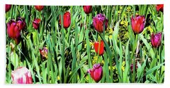 Bath Towel featuring the photograph Tulips Blooming by D Davila