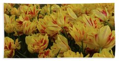 Tulips In The Garden Tulips In The Park  Hand Towel